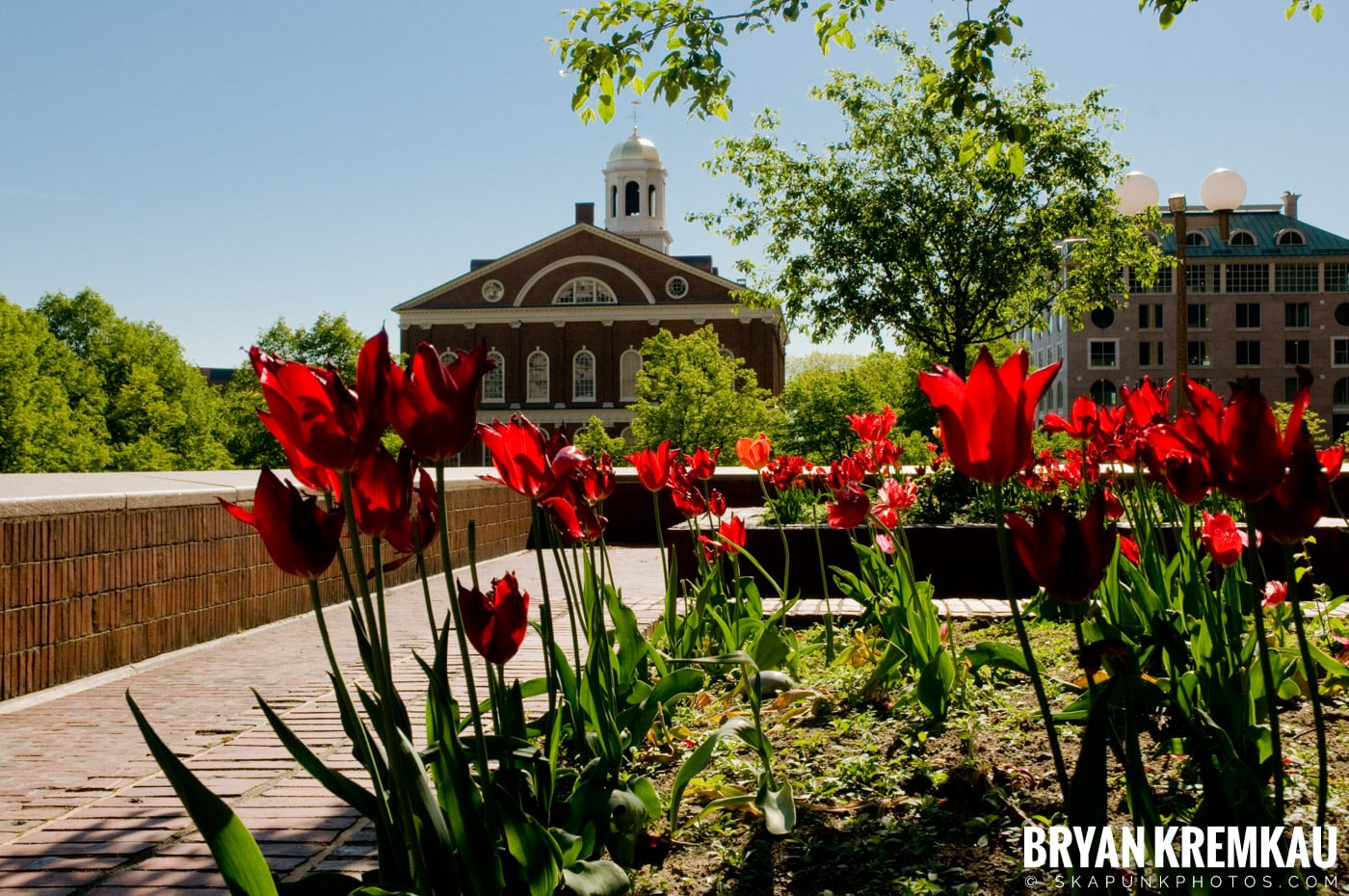 Memorial Day Weekend Trip to Boston - 5.25.08 (46)