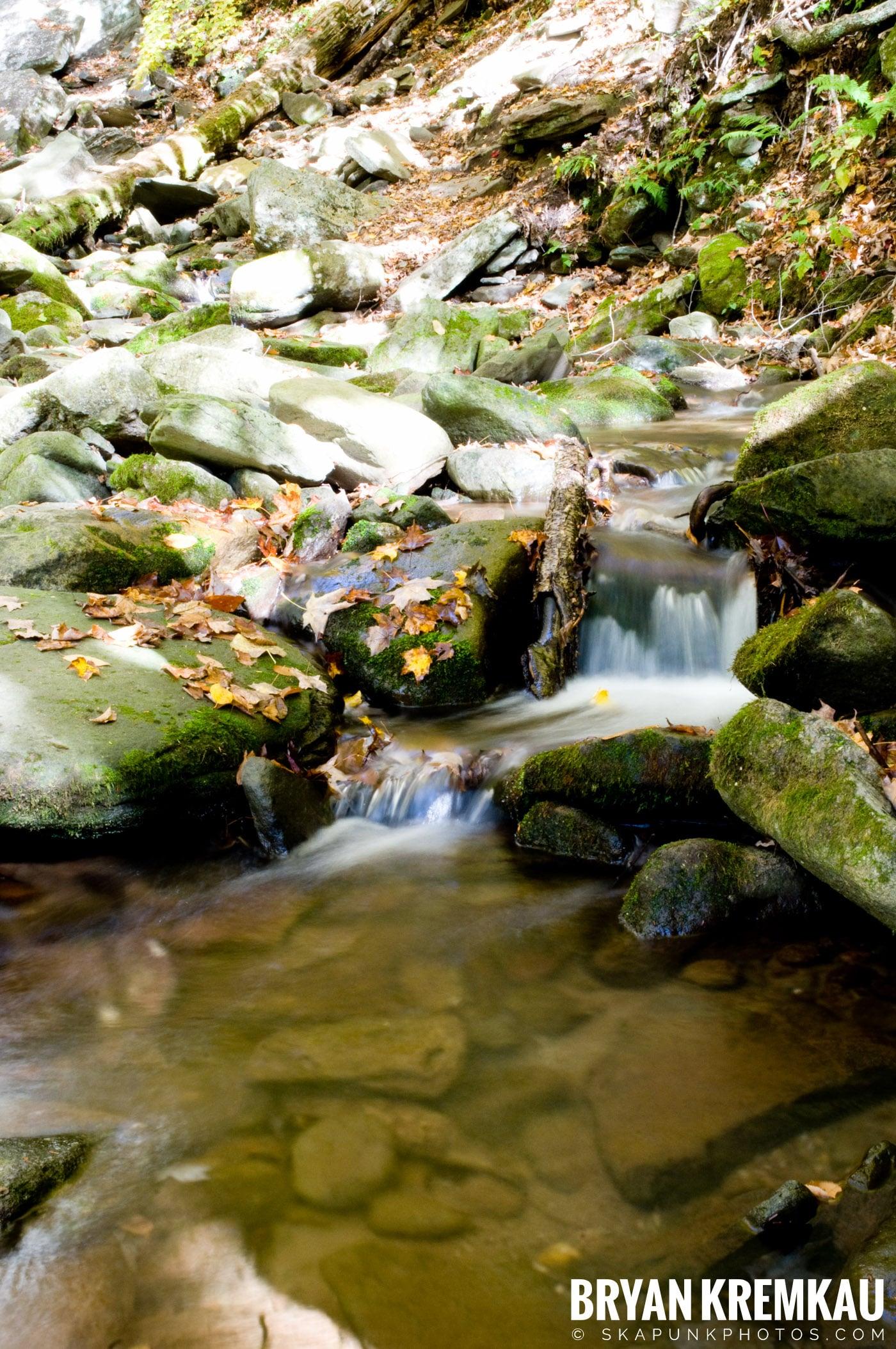 Peekamoose Road Waterfall and Rondout Reservoir - 10.12.08 (26)