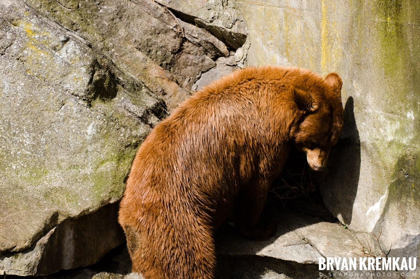 Kristen's Birthday @ Bear Mountain, NY - 3.27.09 (14)