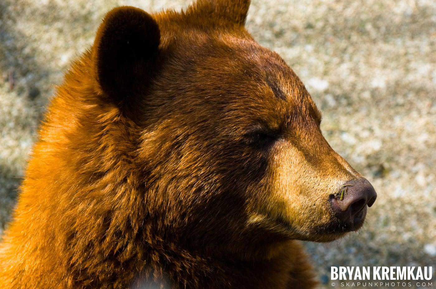 Kristen's Birthday @ Bear Mountain, NY - 3.27.09 (13)