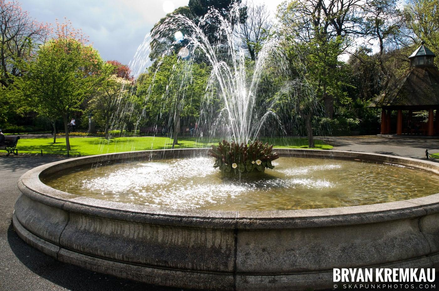 Dublin, Ireland Vacation - Day 1 (1)