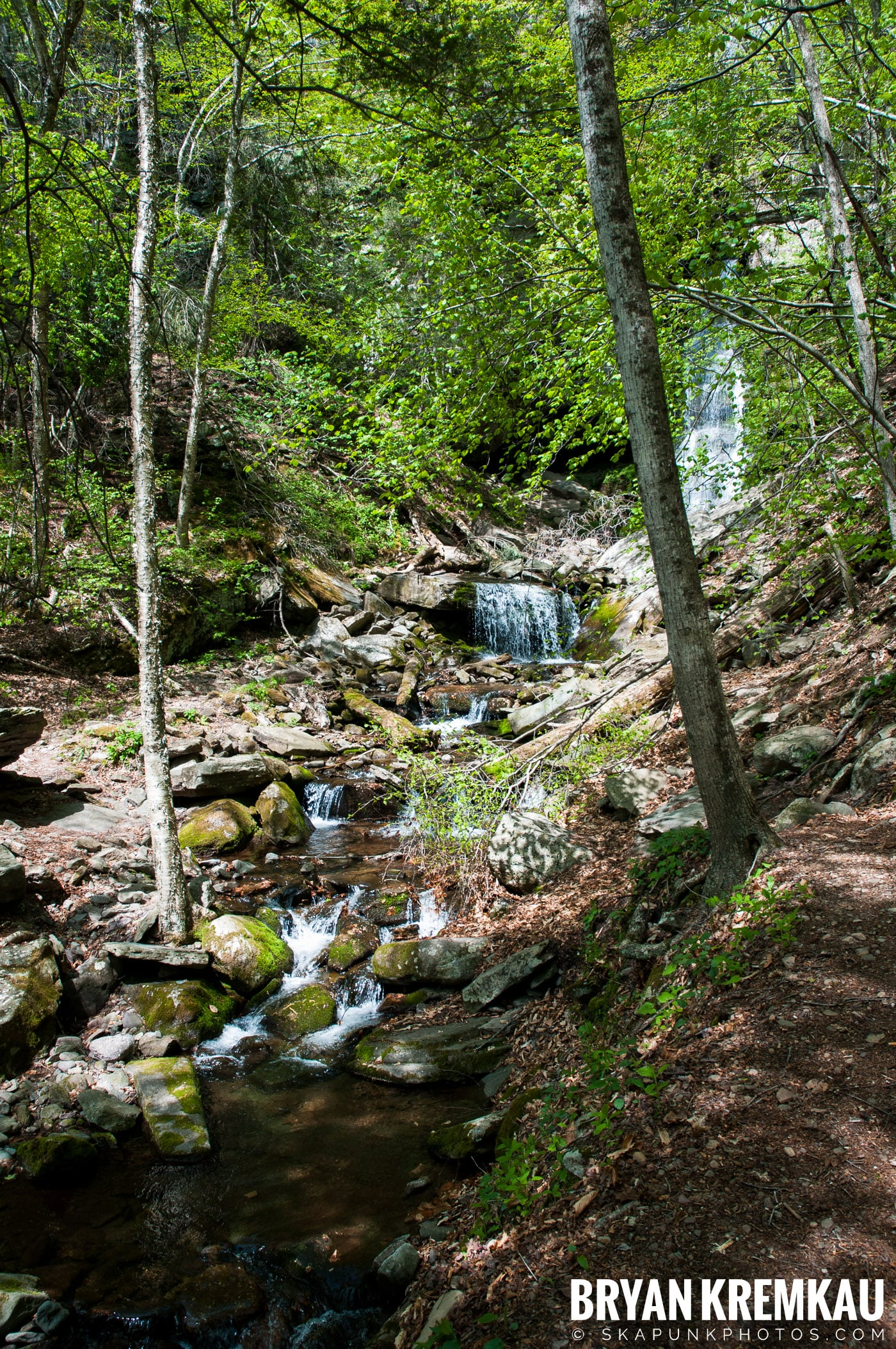 Getting Engaged @ Peekamoose Waterfall, Sundown NY - 5.1.10 (31)