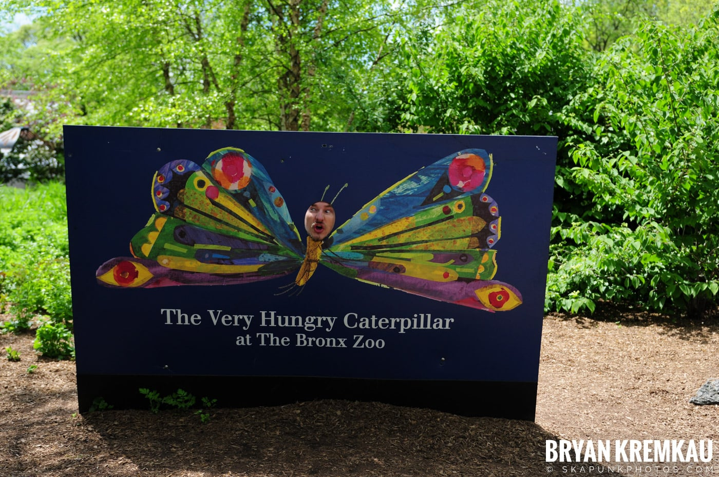 The Bronx Zoo @ Bronx, NYC - 5.7.11 (22)
