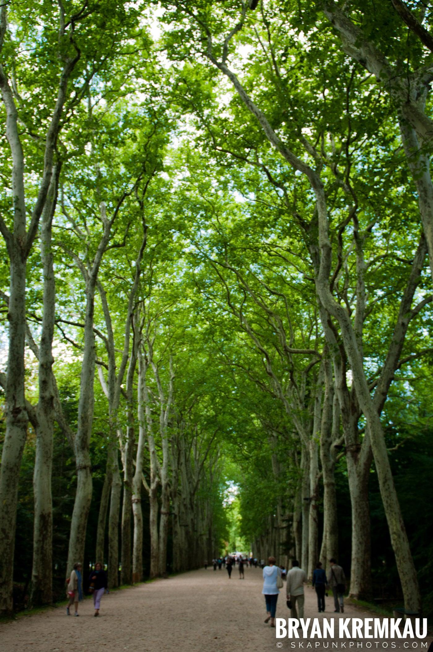 Paris, France Honeymoon - Day 7 - 7.24.11 (24)