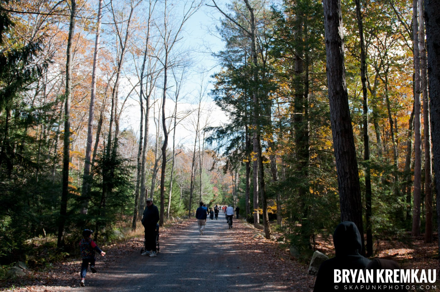 Minnewaska State Park Preserve @ Wawarsing, New York - 10.22.11 (47)