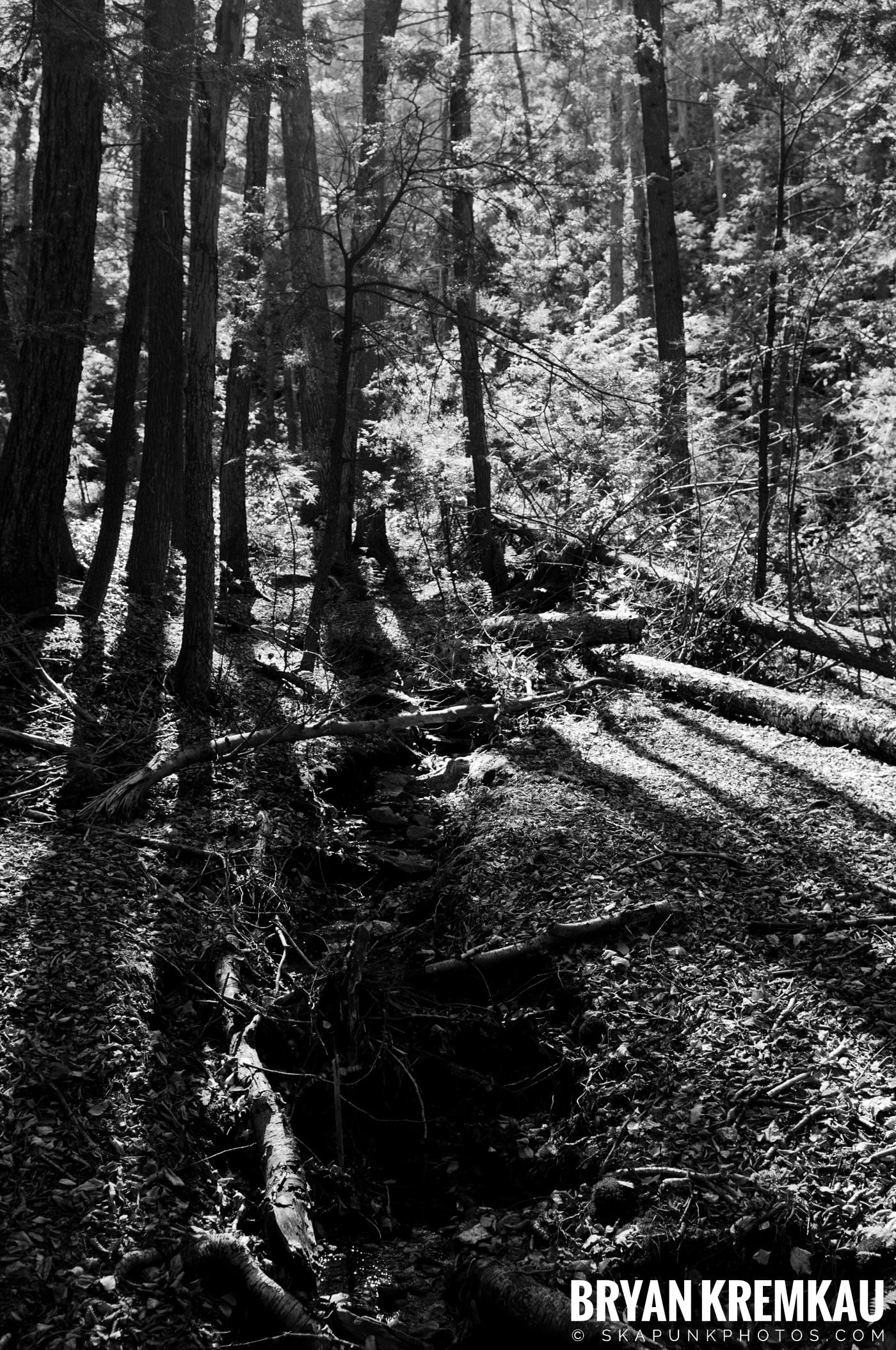 Minnewaska State Park Preserve @ Wawarsing, New York - 10.22.11 (35)
