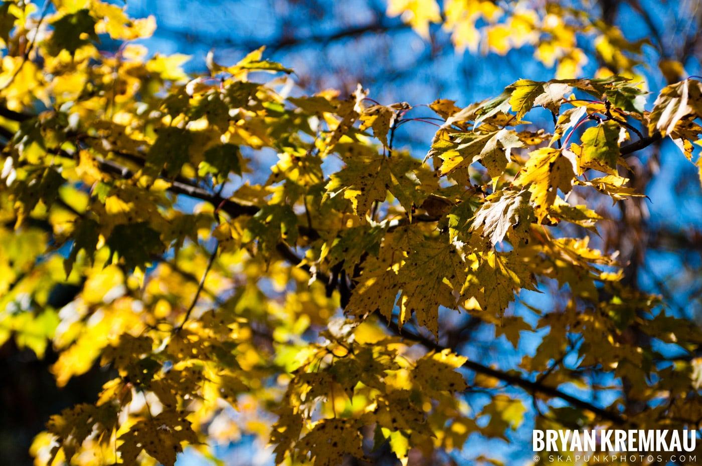 Minnewaska State Park Preserve @ Wawarsing, New York - 10.22.11 (13)
