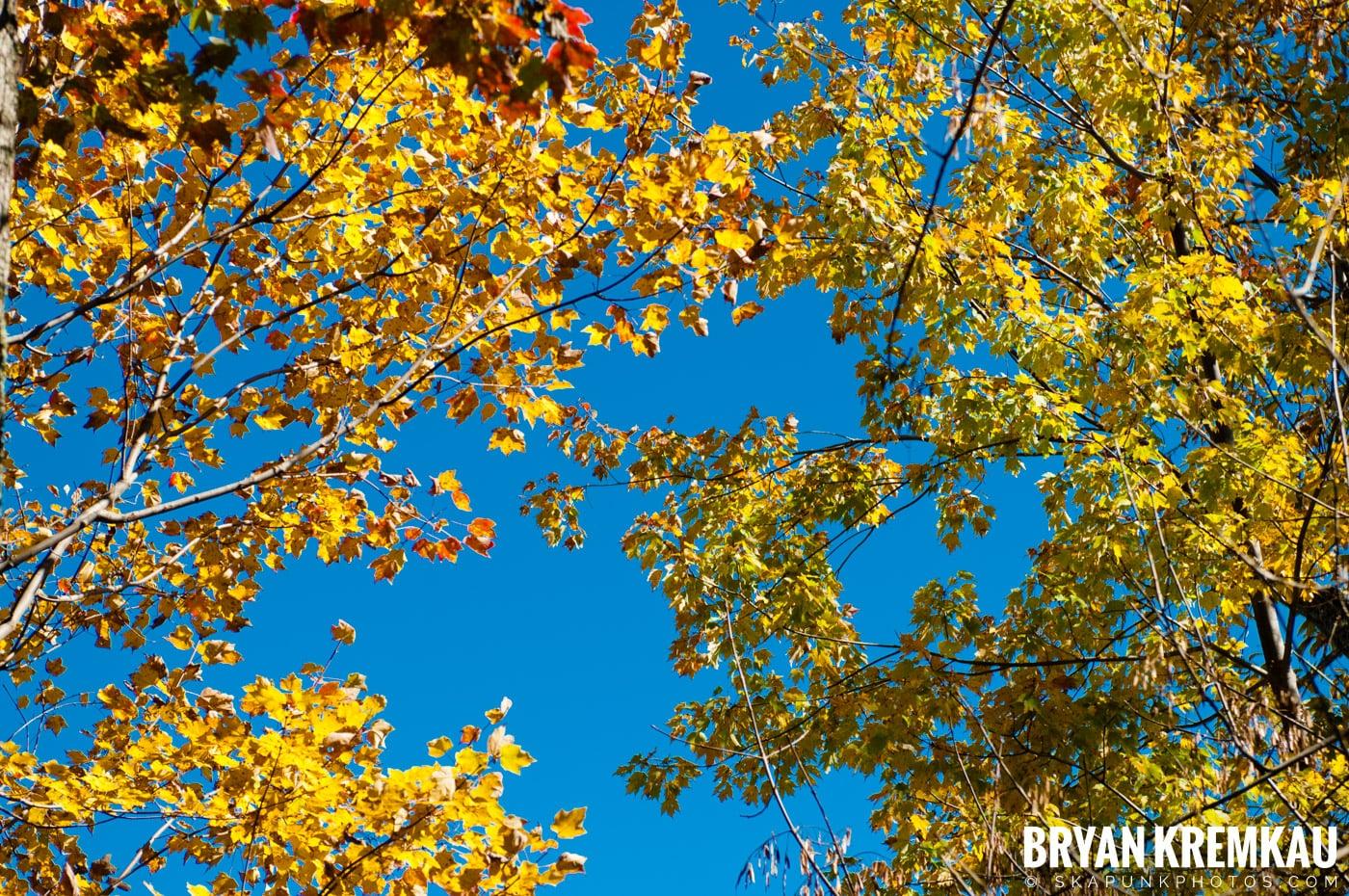 Minnewaska State Park Preserve @ Wawarsing, New York - 10.22.11 (1)