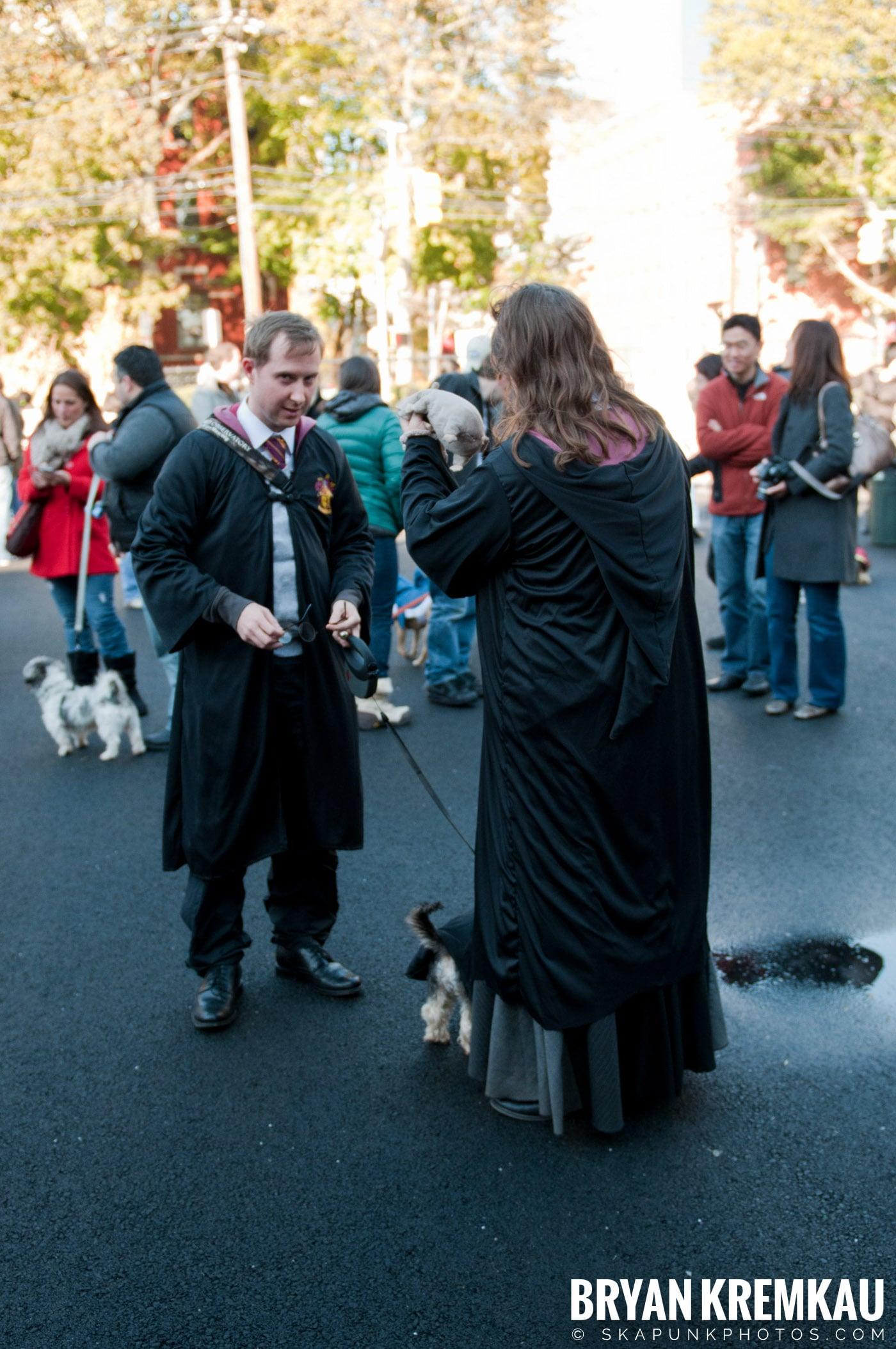Paulus Hook Halloween Pet Parade 2011 @ Jersey City, NJ - 10.30.11 (59)