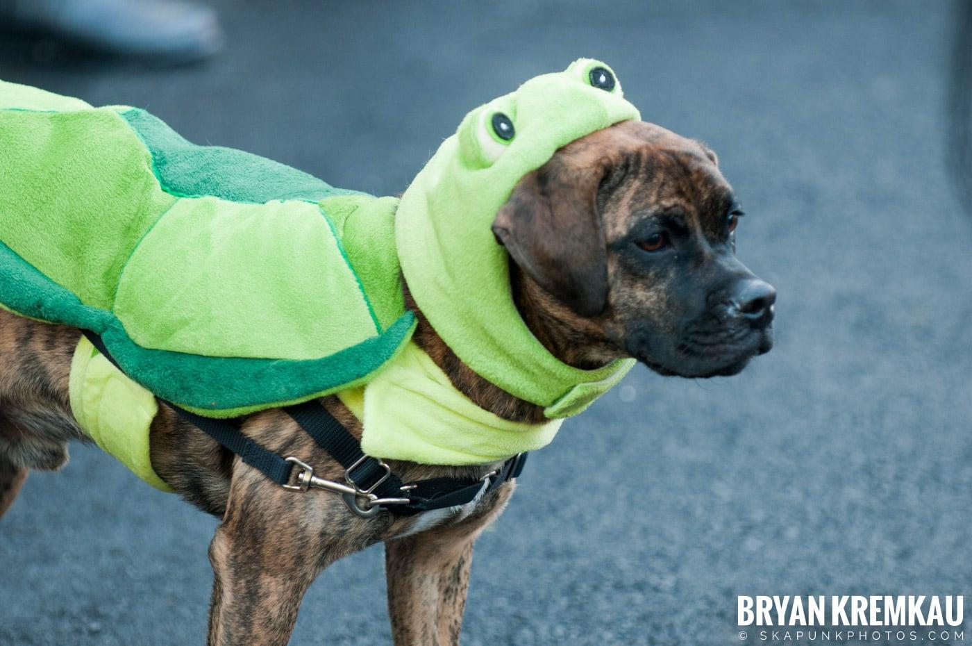 Paulus Hook Halloween Pet Parade 2011 @ Jersey City, NJ - 10.30.11 (50)