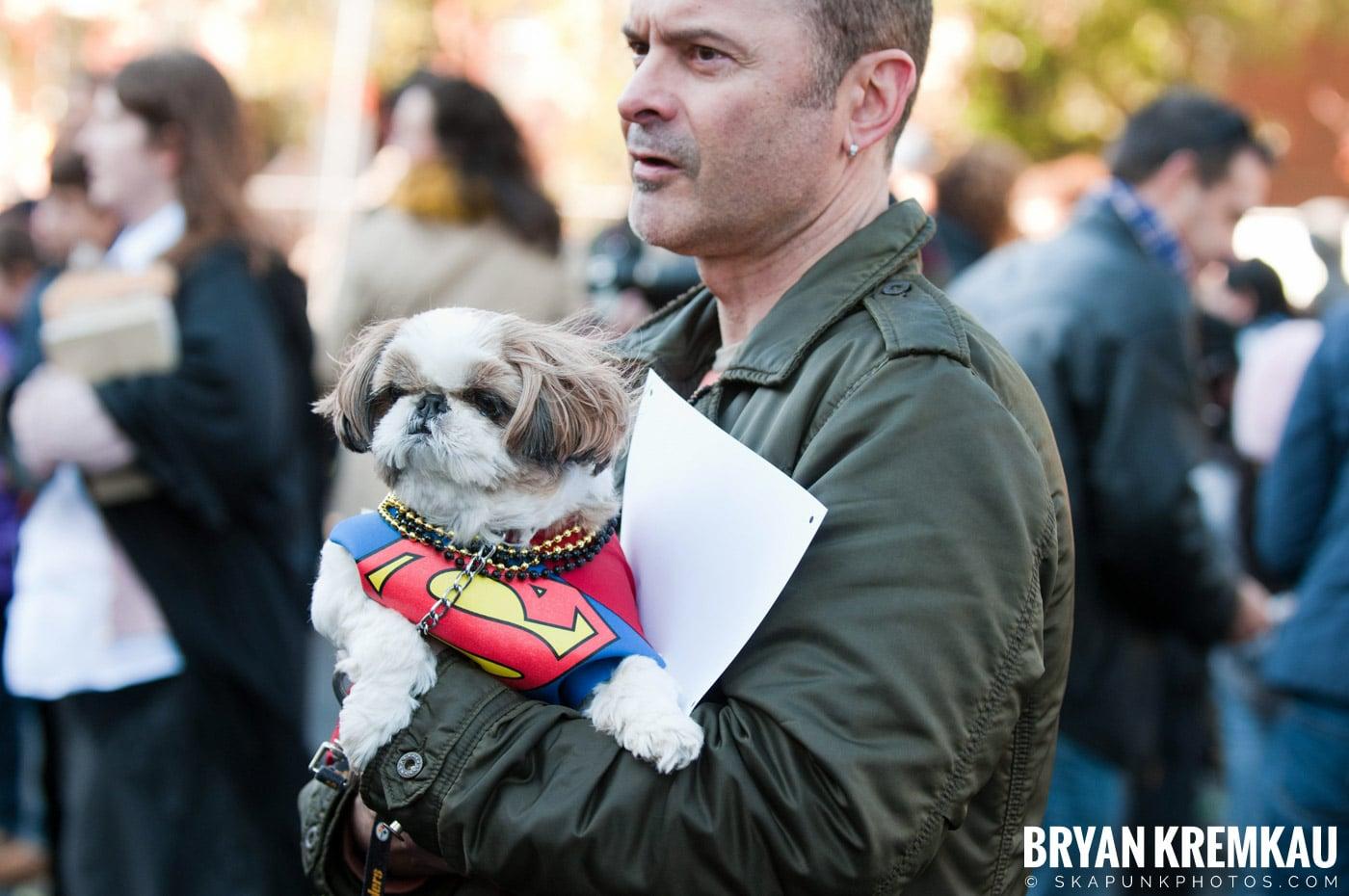 Paulus Hook Halloween Pet Parade 2011 @ Jersey City, NJ - 10.30.11 (48)