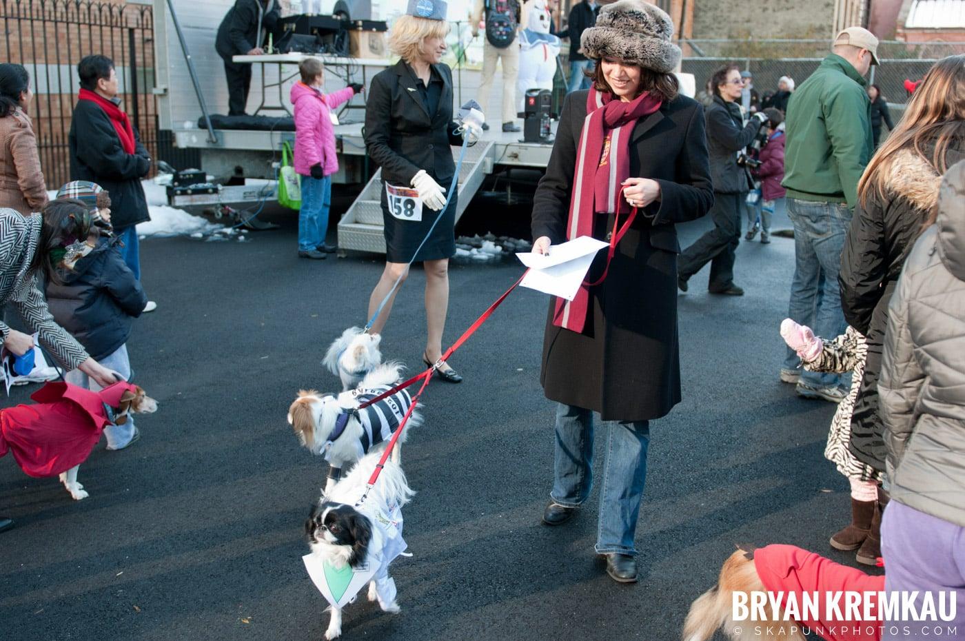 Paulus Hook Halloween Pet Parade 2011 @ Jersey City, NJ - 10.30.11 (35)