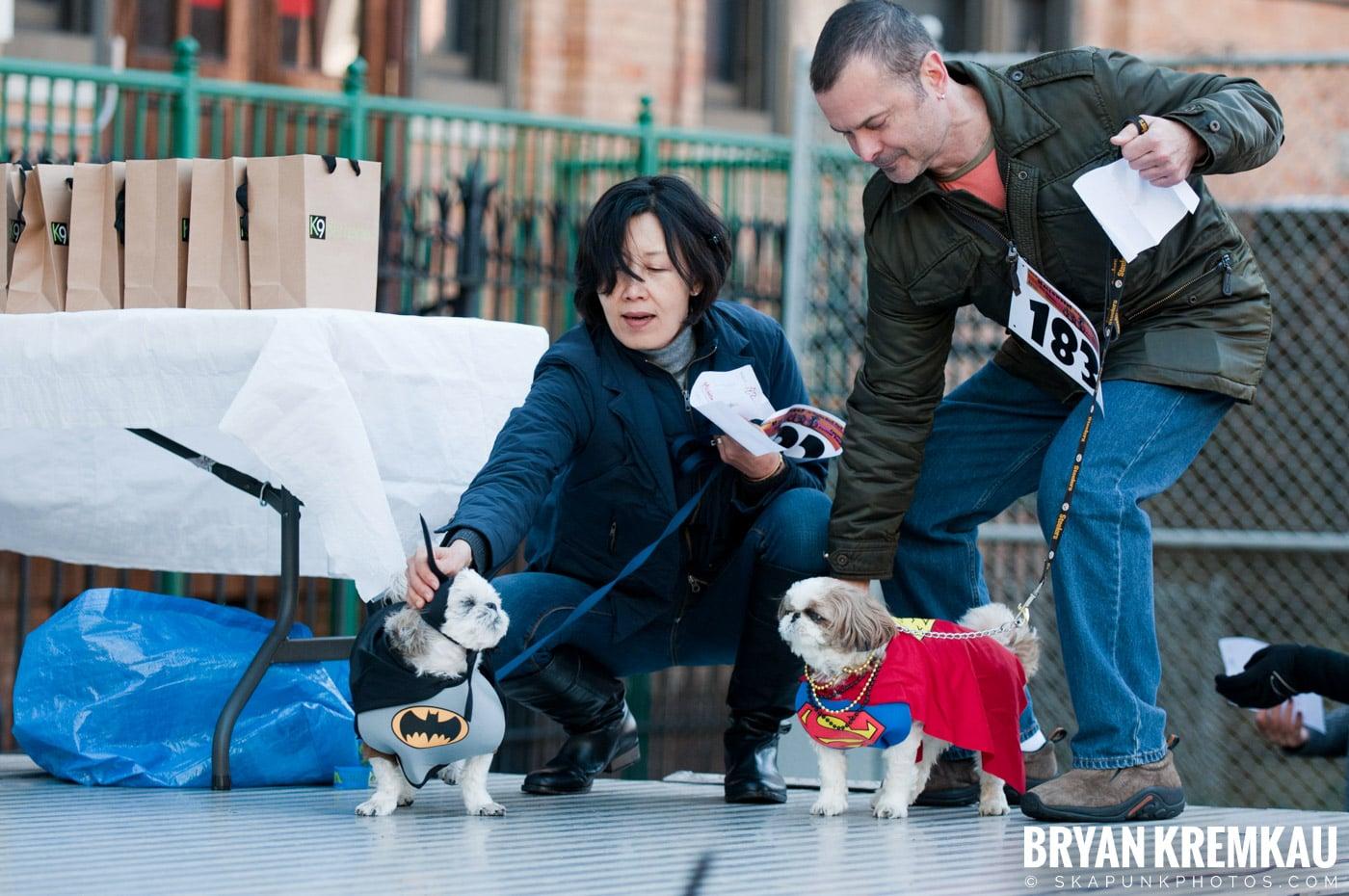 Paulus Hook Halloween Pet Parade 2011 @ Jersey City, NJ - 10.30.11 (31)