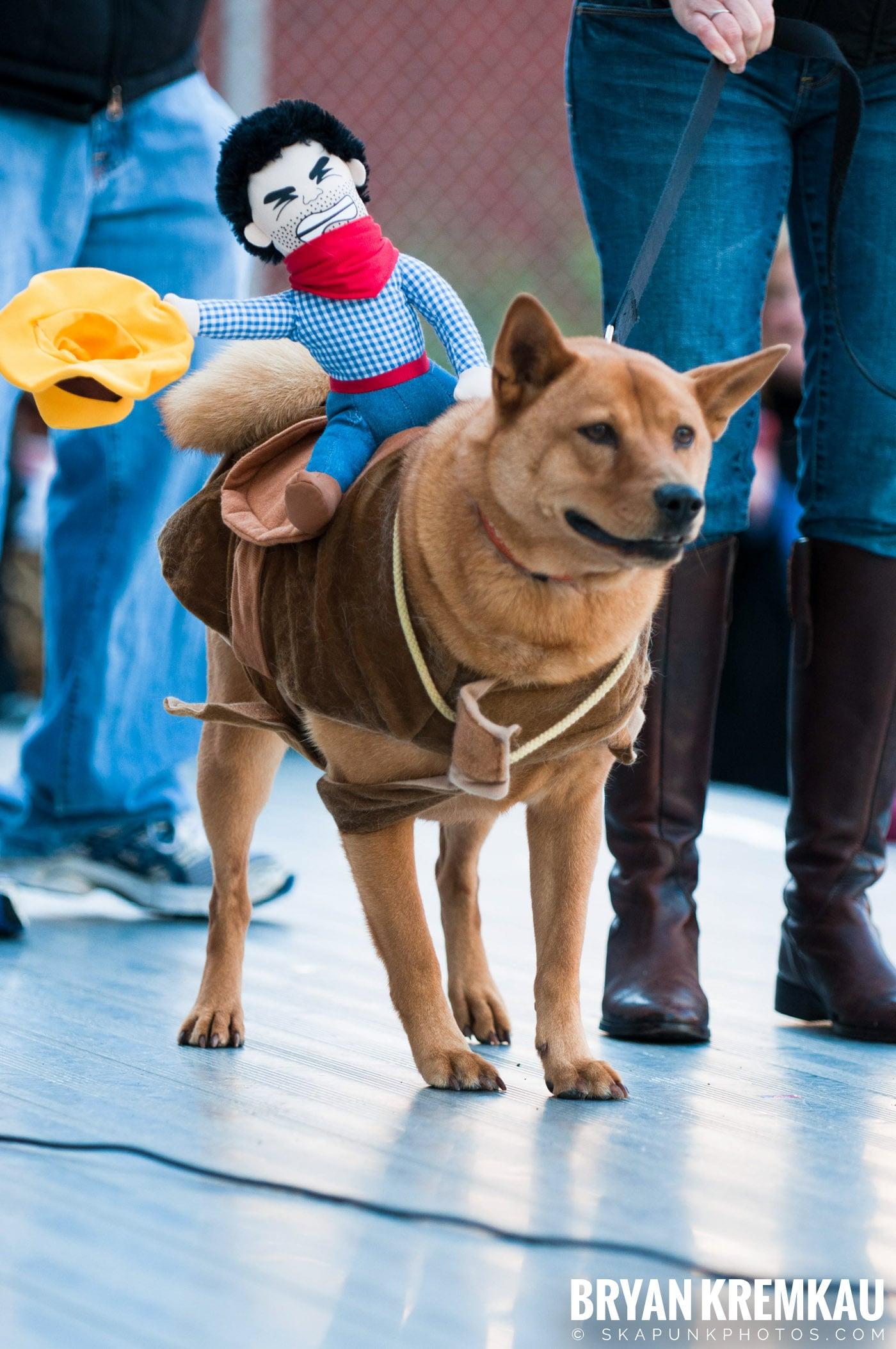 Paulus Hook Halloween Pet Parade 2011 @ Jersey City, NJ - 10.30.11 (20)