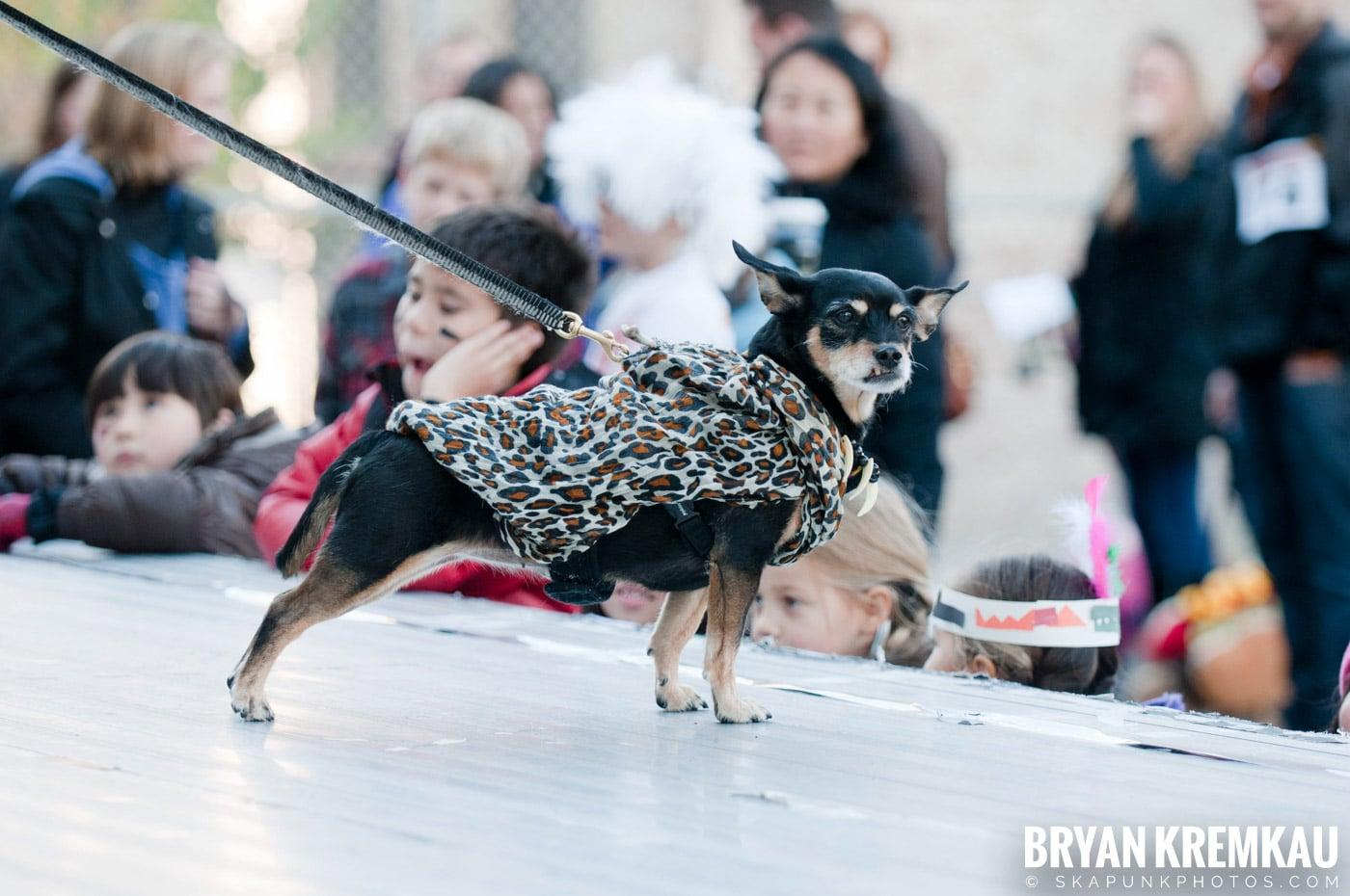 Paulus Hook Halloween Pet Parade 2011 @ Jersey City, NJ - 10.30.11 (19)