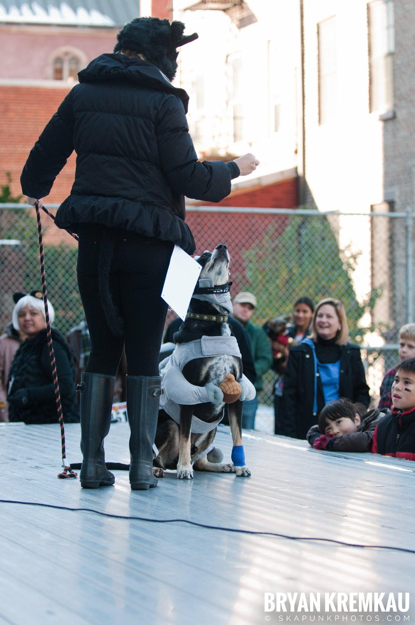 Paulus Hook Halloween Pet Parade 2011 @ Jersey City, NJ - 10.30.11 (6)