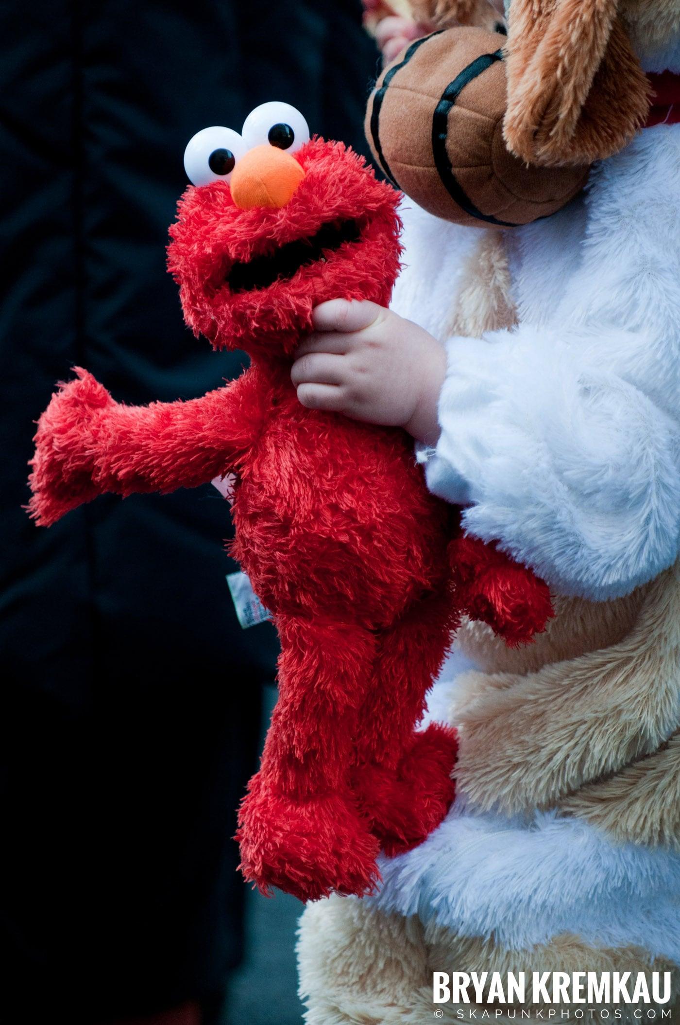 Paulus Hook Halloween Pet Parade 2011 @ Jersey City, NJ - 10.30.11 (5)