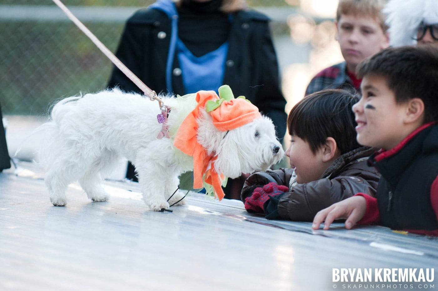 Paulus Hook Halloween Pet Parade 2011 @ Jersey City, NJ - 10.30.11 (1)