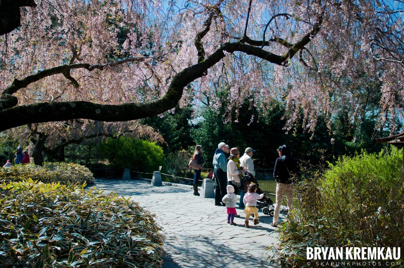 Brooklyn Botanic Garden & Prospect Park Zoo @ Brooklyn, NY - 4.6.12 (94)