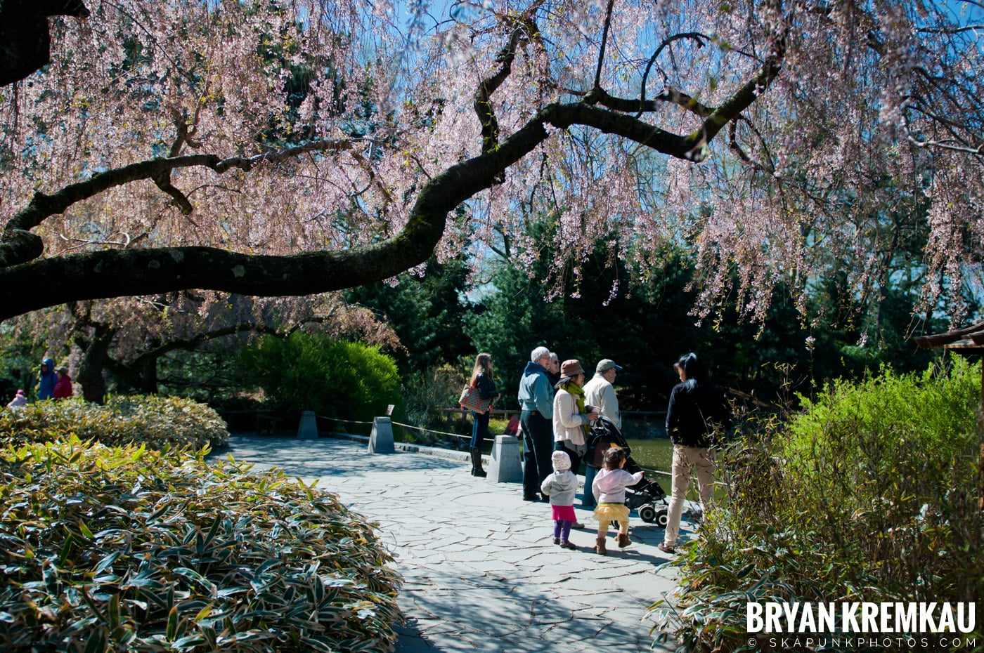brooklyn botanic garden u0026 prospect park zoo brooklyn ny u2013 4 6