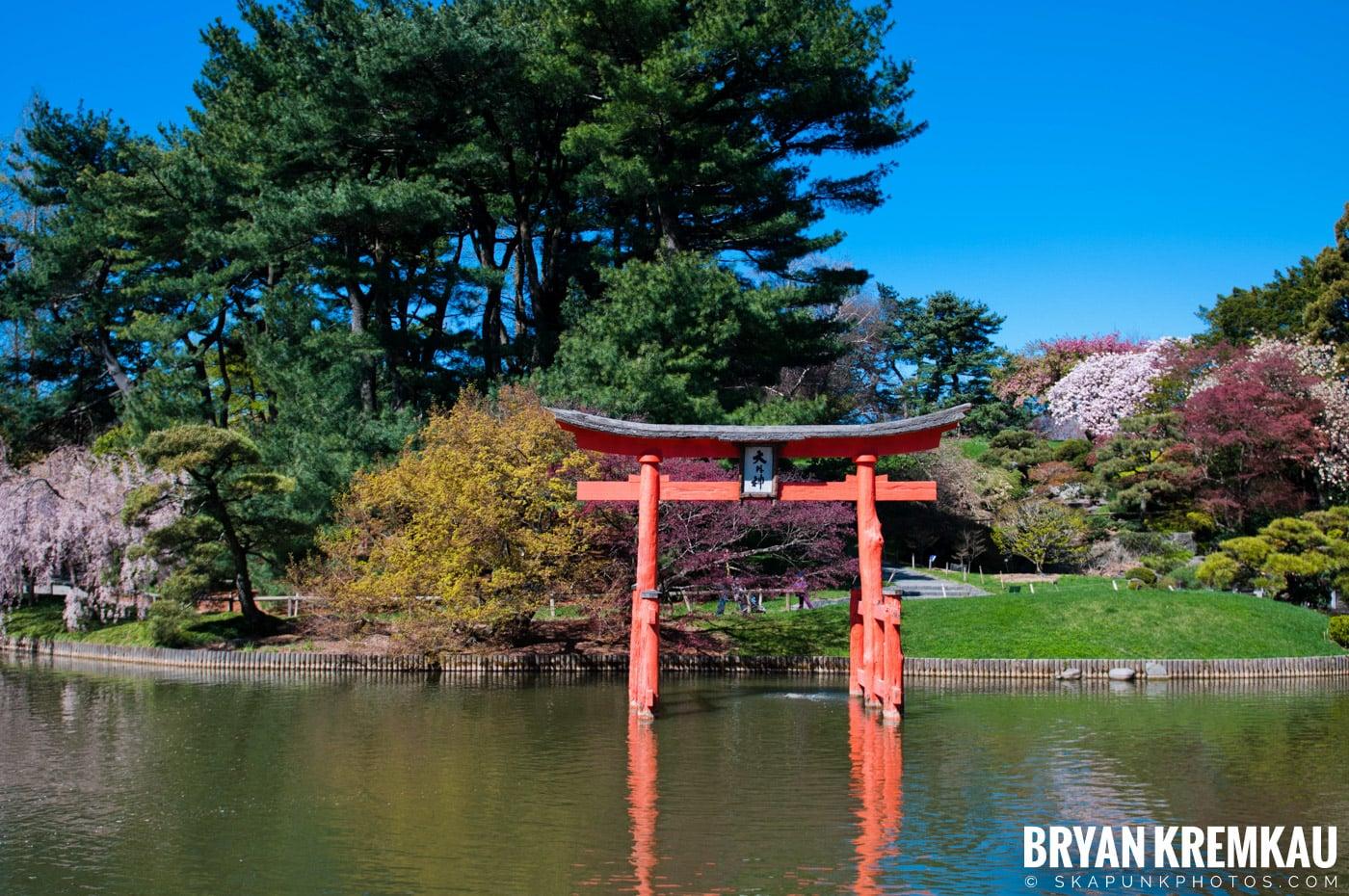 Brooklyn Botanic Garden & Prospect Park Zoo @ Brooklyn, NY - 4.6.12 (93)
