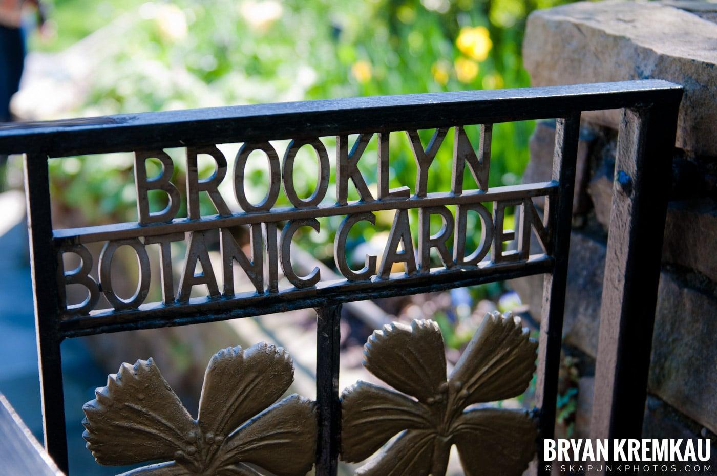 Brooklyn Botanic Garden & Prospect Park Zoo @ Brooklyn, NY - 4.6.12 (85)