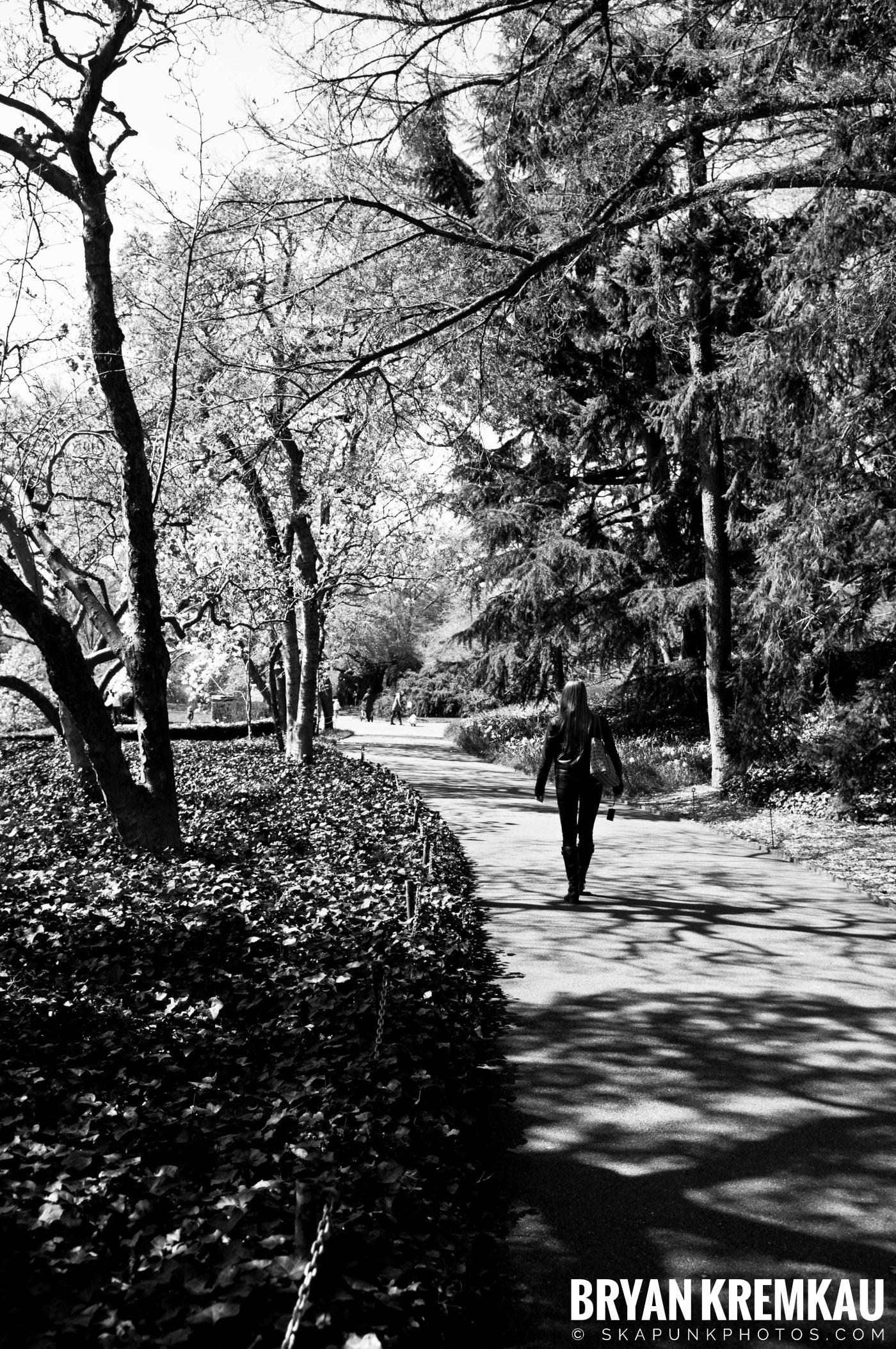 Brooklyn Botanic Garden & Prospect Park Zoo @ Brooklyn, NY - 4.6.12 (71)