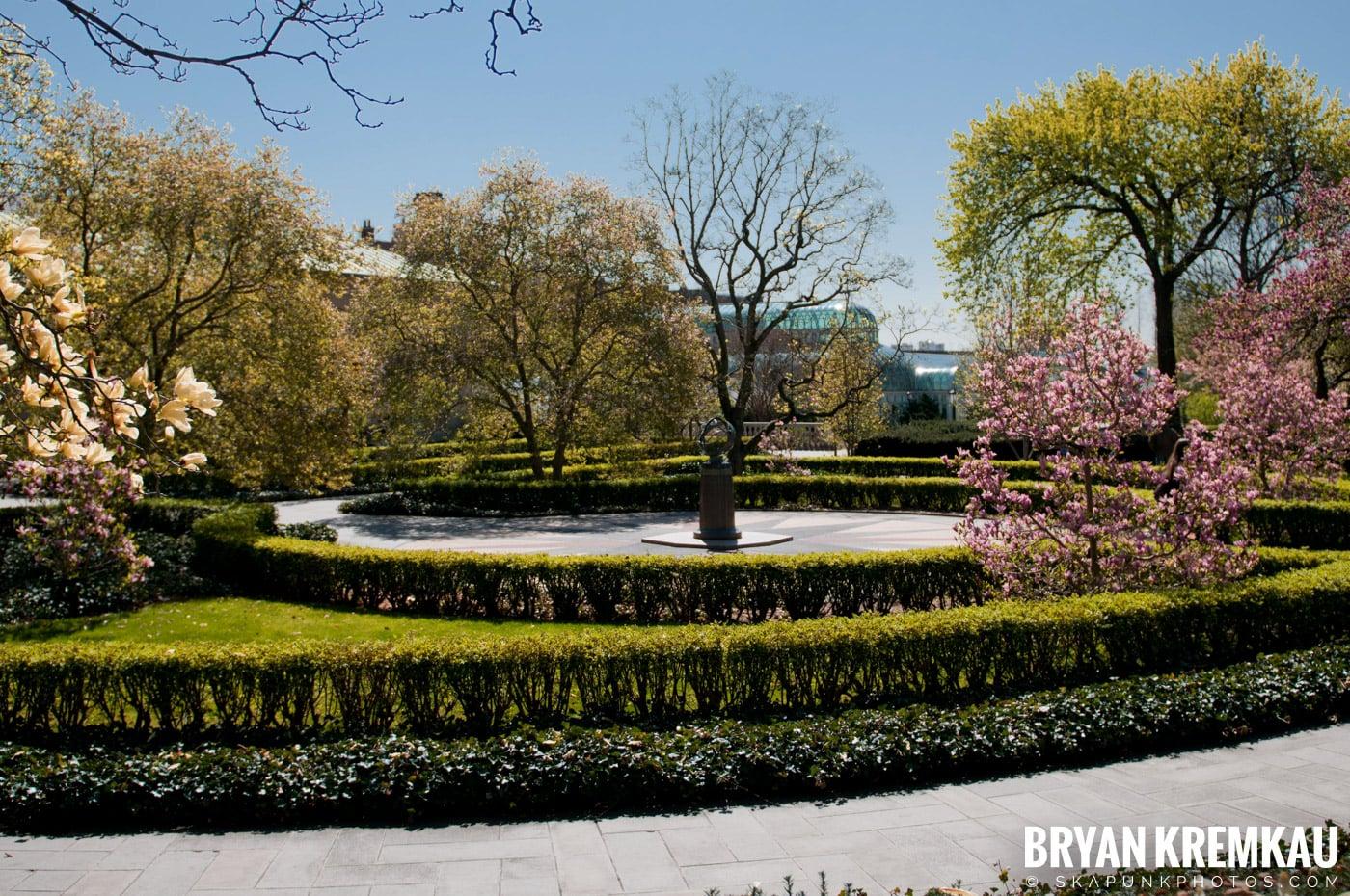 Brooklyn Botanic Garden & Prospect Park Zoo @ Brooklyn, NY - 4.6.12 (68)