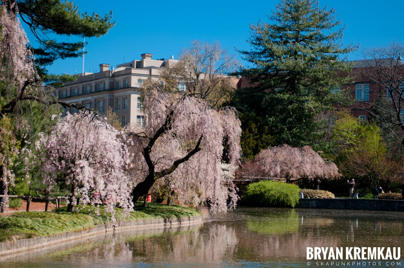 Brooklyn Botanic Garden & Prospect Park Zoo @ Brooklyn, NY - 4.6.12 (60)
