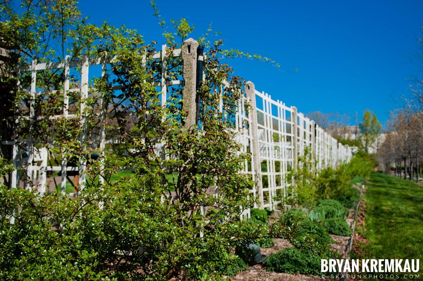 Brooklyn Botanic Garden & Prospect Park Zoo @ Brooklyn, NY - 4.6.12 (59)