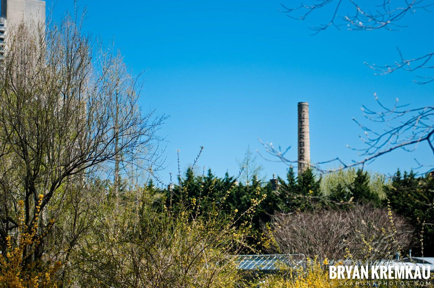 Brooklyn Botanic Garden & Prospect Park Zoo @ Brooklyn, NY - 4.6.12 (40)