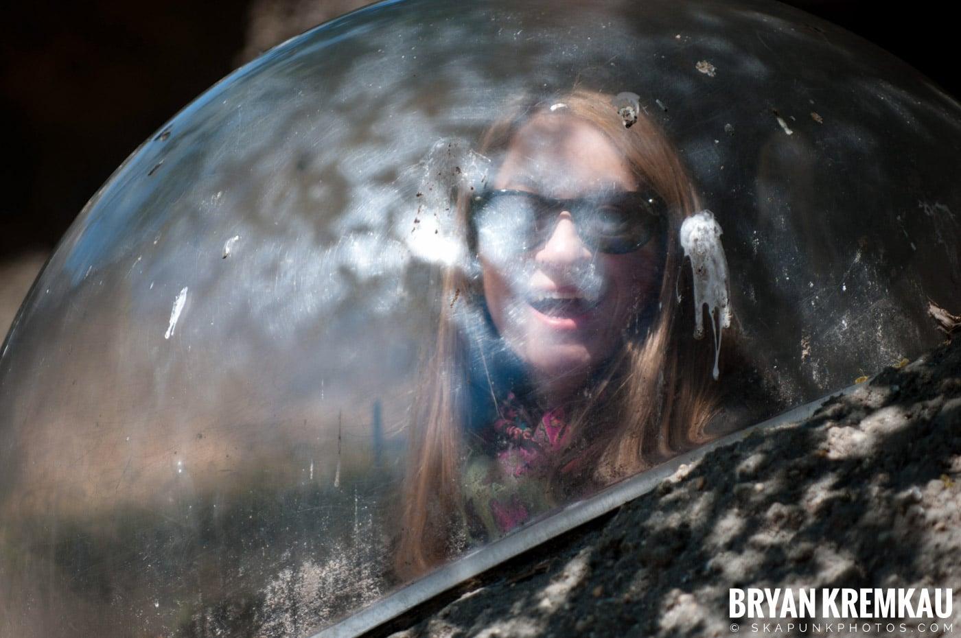 Brooklyn Botanic Garden & Prospect Park Zoo @ Brooklyn, NY - 4.6.12 (33)