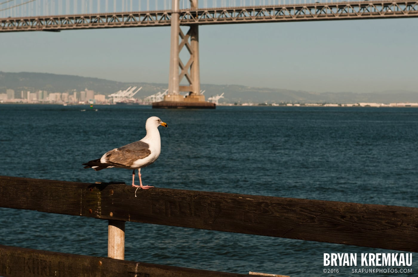 San Francisco Vacation - Day 1 - 4.28.12 (26)