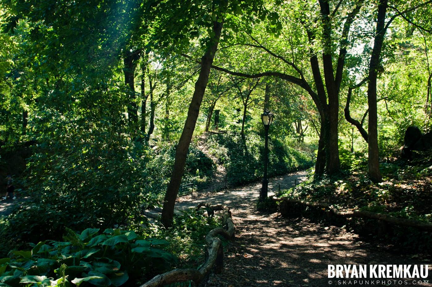 Central Park @ New York, NY - 9.9.12 (50)
