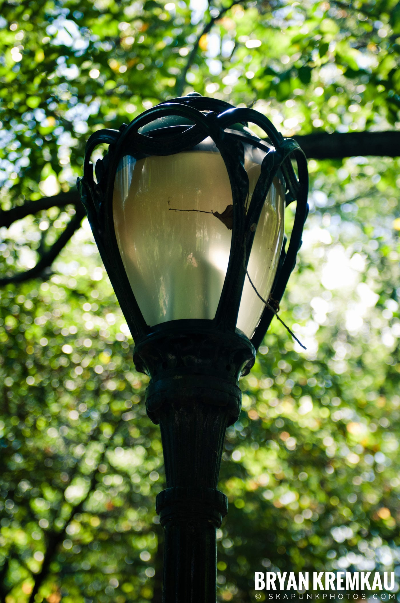 Central Park @ New York, NY - 9.9.12 (49)