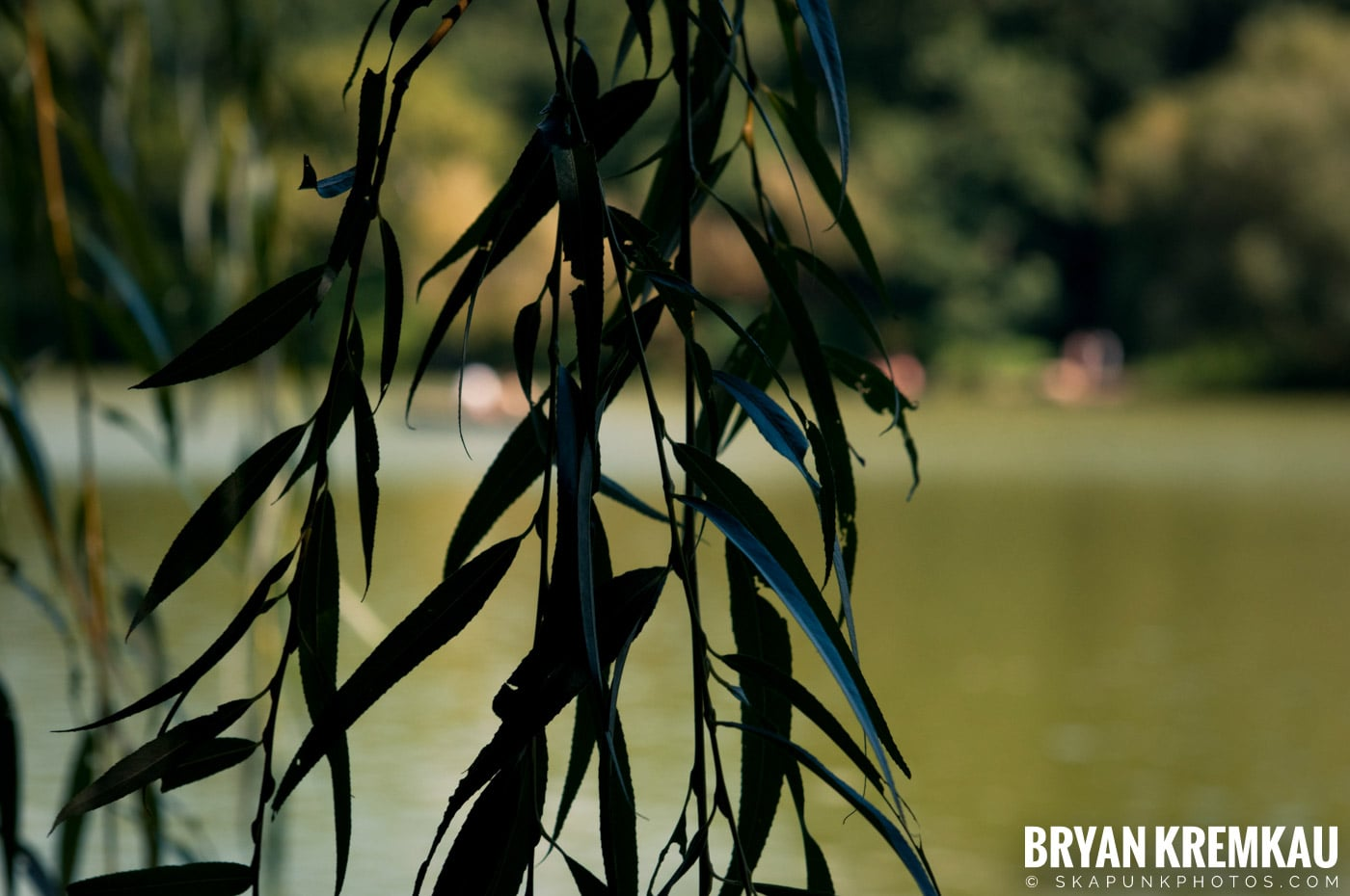 Central Park @ New York, NY - 9.9.12 (44)