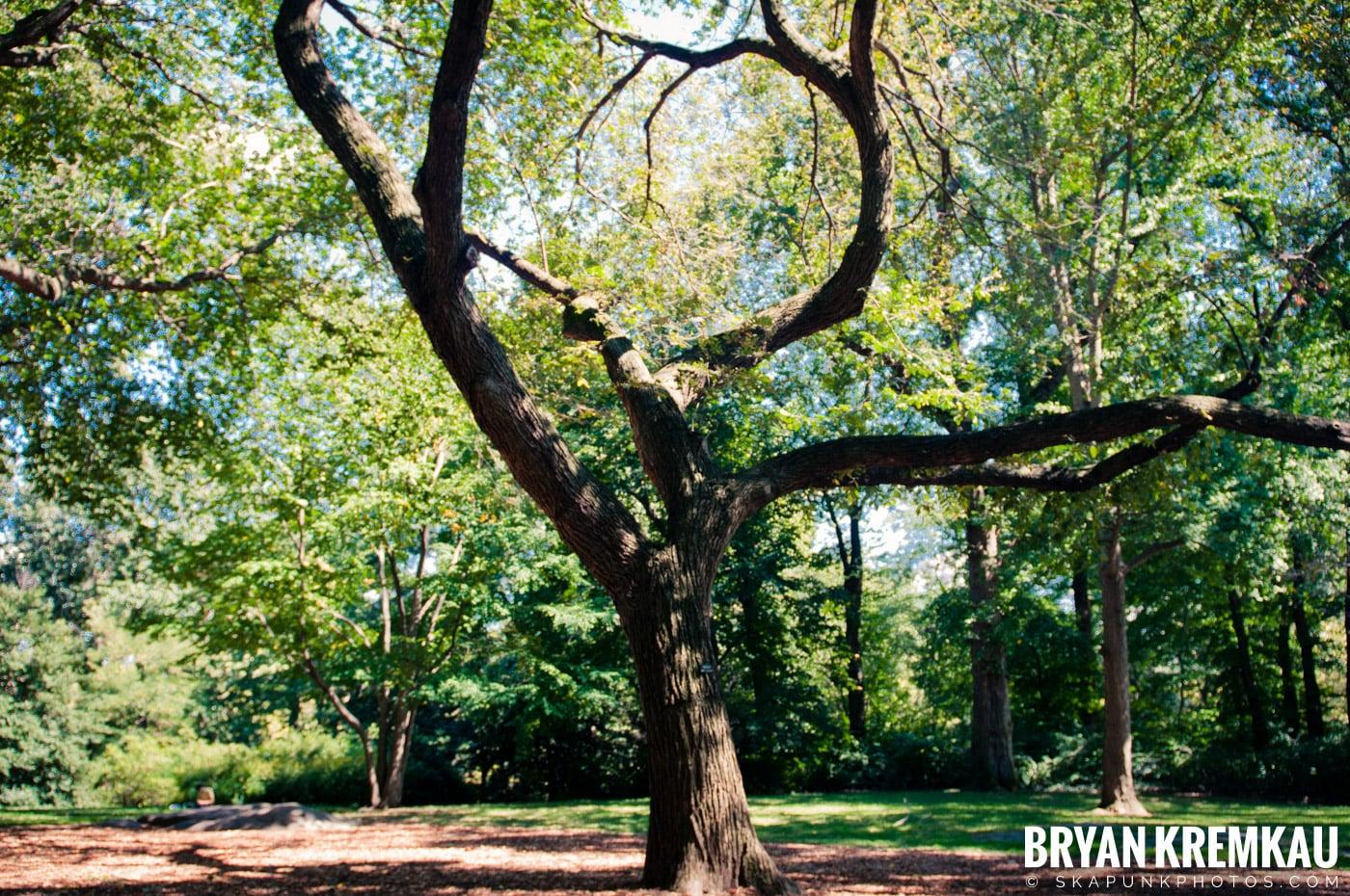 Central Park @ New York, NY - 9.9.12 (33)