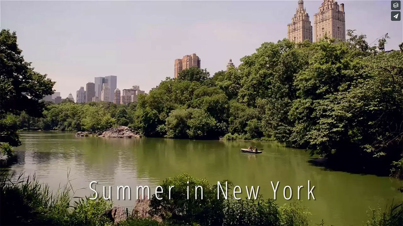 Summer In NYC