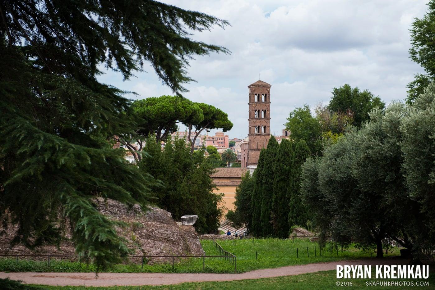 Italy Vacation - Day 2: Rome - 9.10.13 (78)
