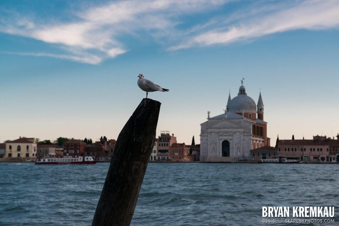 Italy Vacation - Day 4: Venice - 9.12.13 (13)