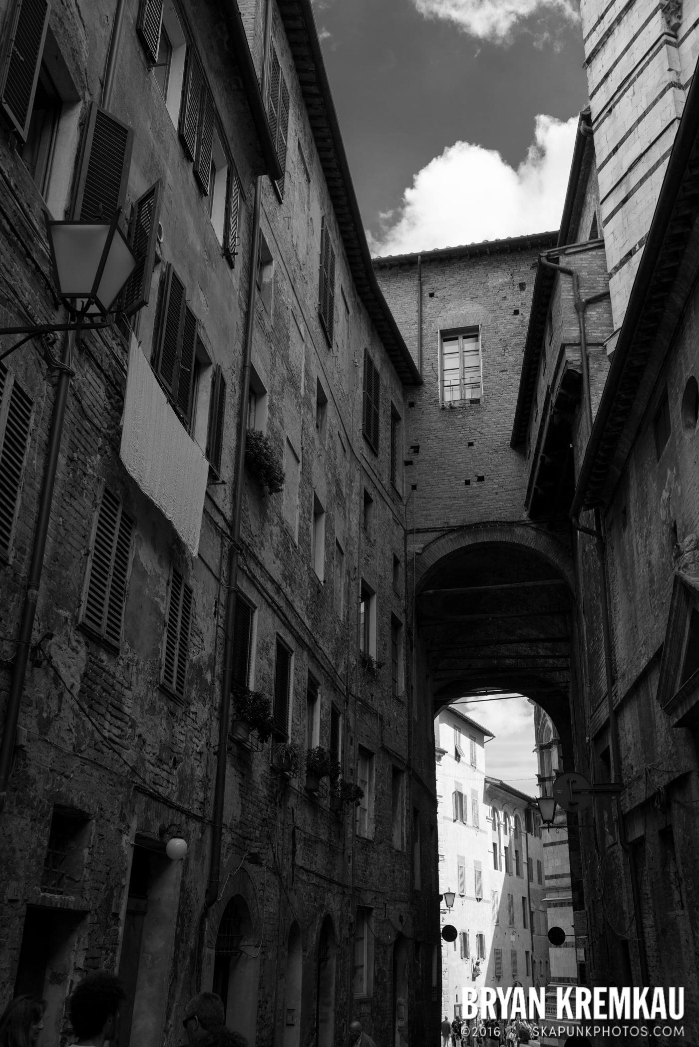 Italy Vacation - Day 8: Siena, San Gimignano, Chianti, Pisa - 9.16.13 (123)