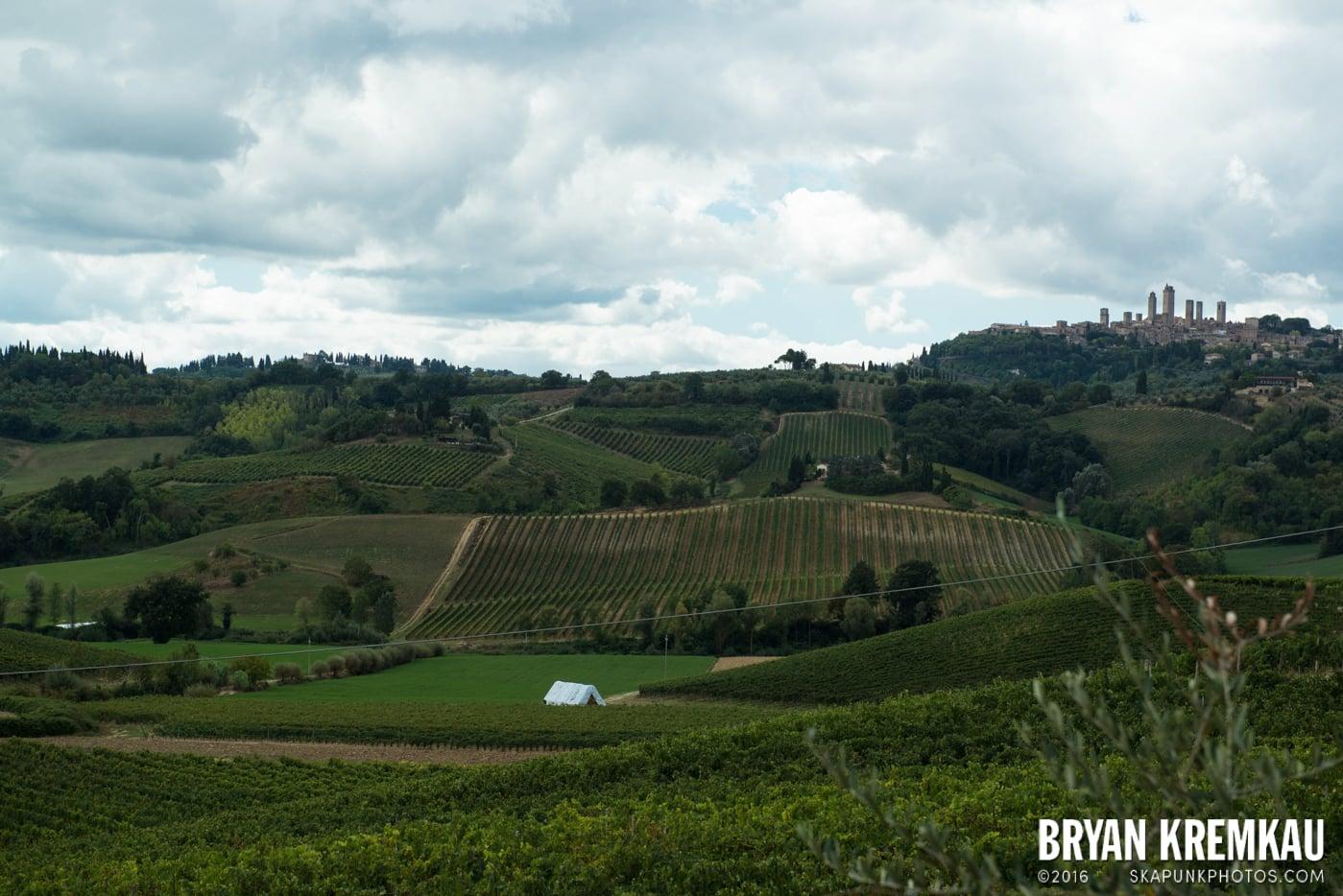 Italy Vacation - Day 8: Siena, San Gimignano, Chianti, Pisa - 9.16.13 (109)