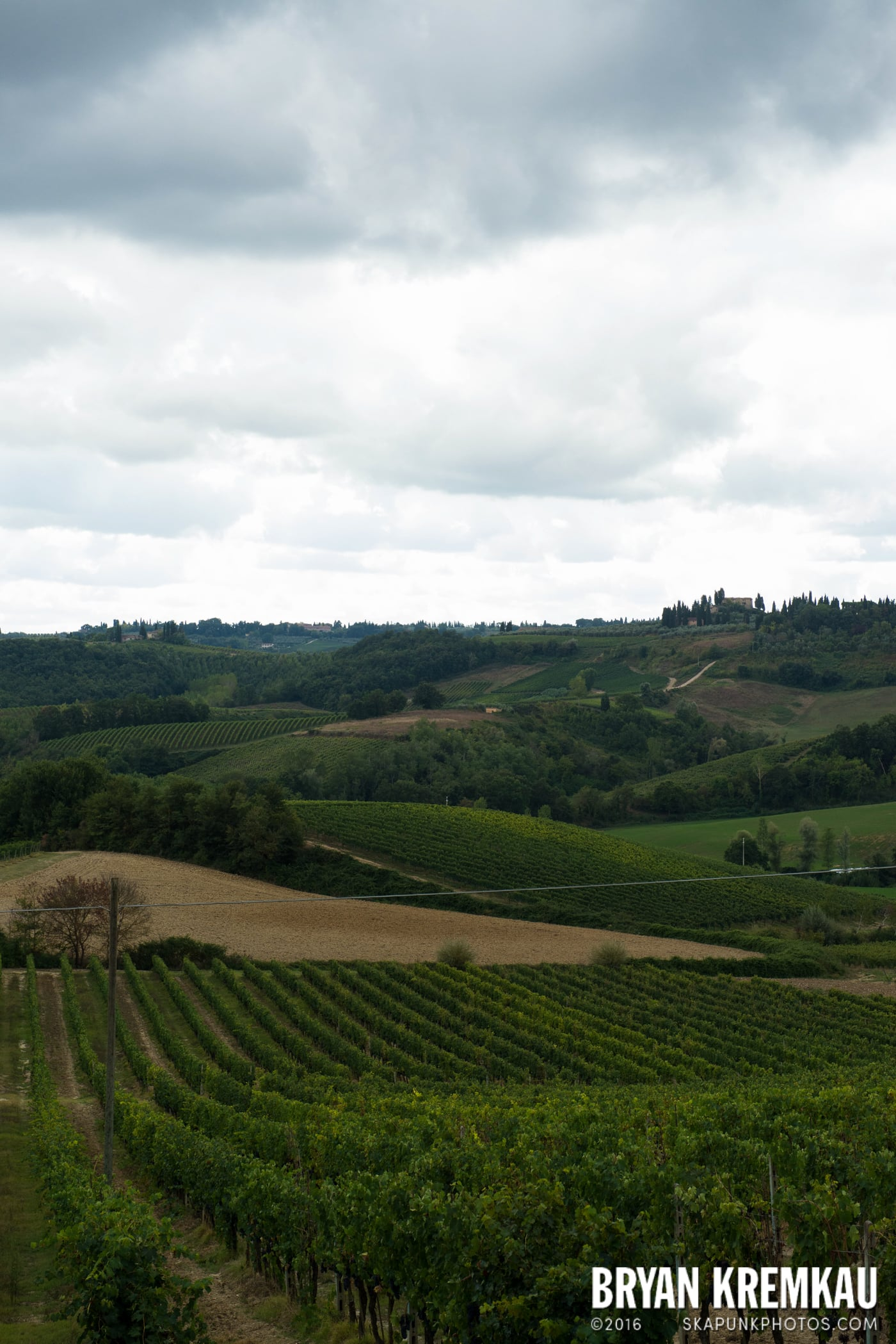 Italy Vacation - Day 8: Siena, San Gimignano, Chianti, Pisa - 9.16.13 (108)