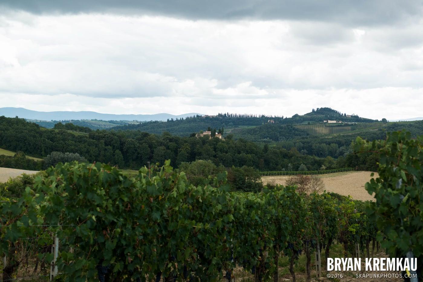 Italy Vacation - Day 8: Siena, San Gimignano, Chianti, Pisa - 9.16.13 (101)