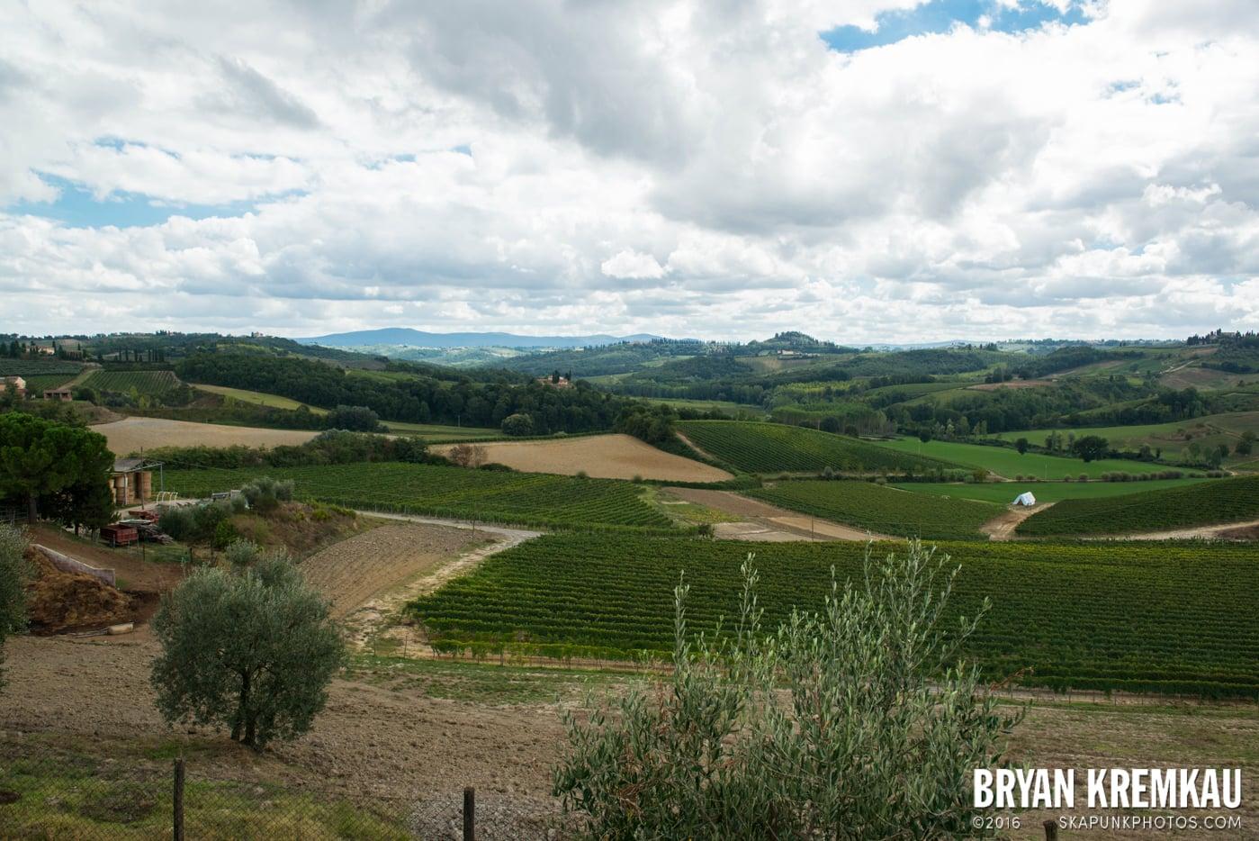 Italy Vacation - Day 8: Siena, San Gimignano, Chianti, Pisa - 9.16.13 (87)