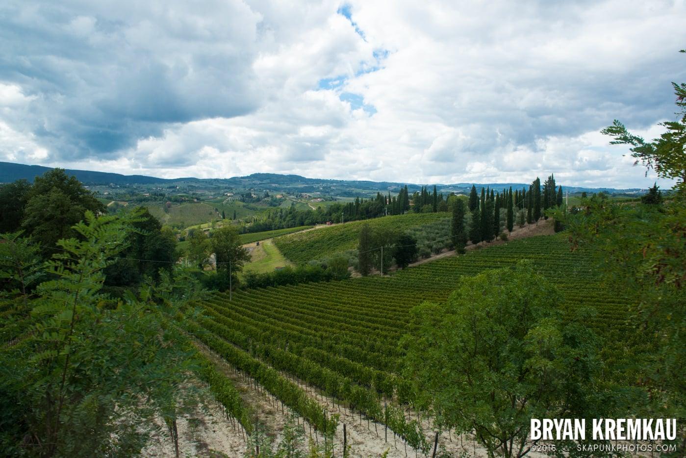 Italy Vacation - Day 8: Siena, San Gimignano, Chianti, Pisa - 9.16.13 (80)