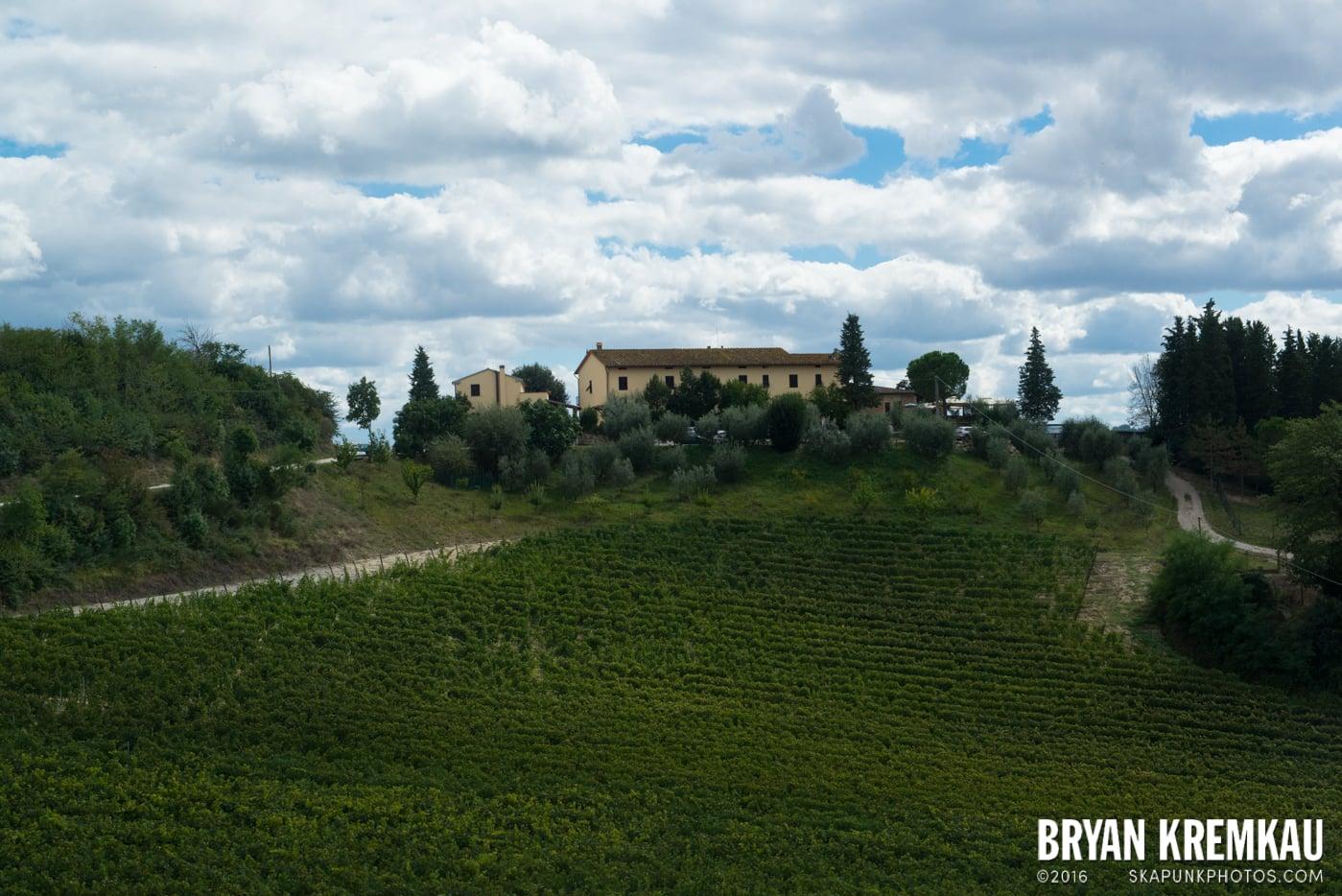 Italy Vacation - Day 8: Siena, San Gimignano, Chianti, Pisa - 9.16.13 (79)