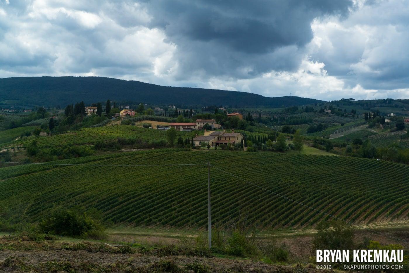 Italy Vacation - Day 8: Siena, San Gimignano, Chianti, Pisa - 9.16.13 (78)