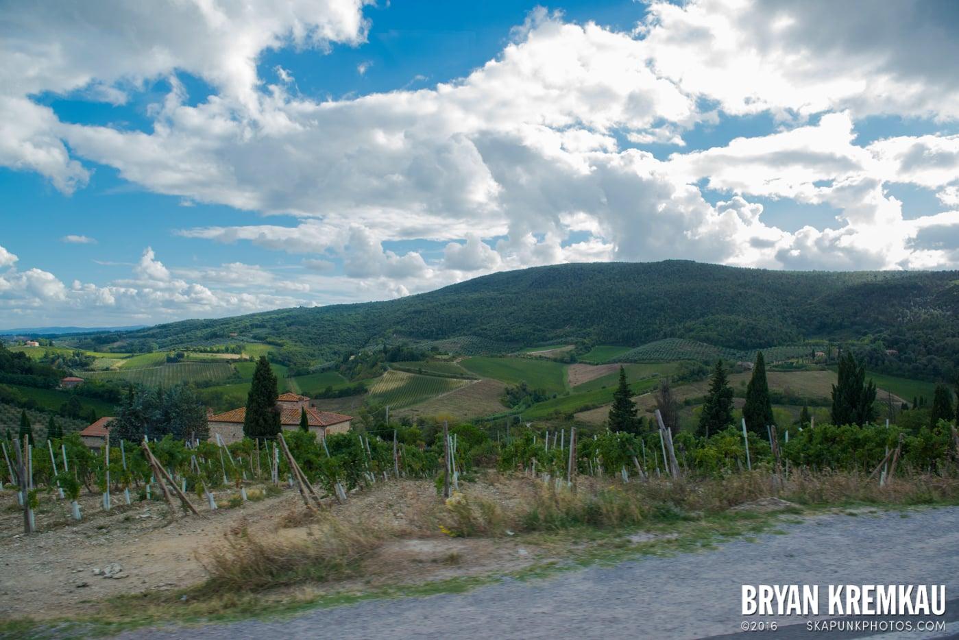 Italy Vacation - Day 8: Siena, San Gimignano, Chianti, Pisa - 9.16.13 (44)
