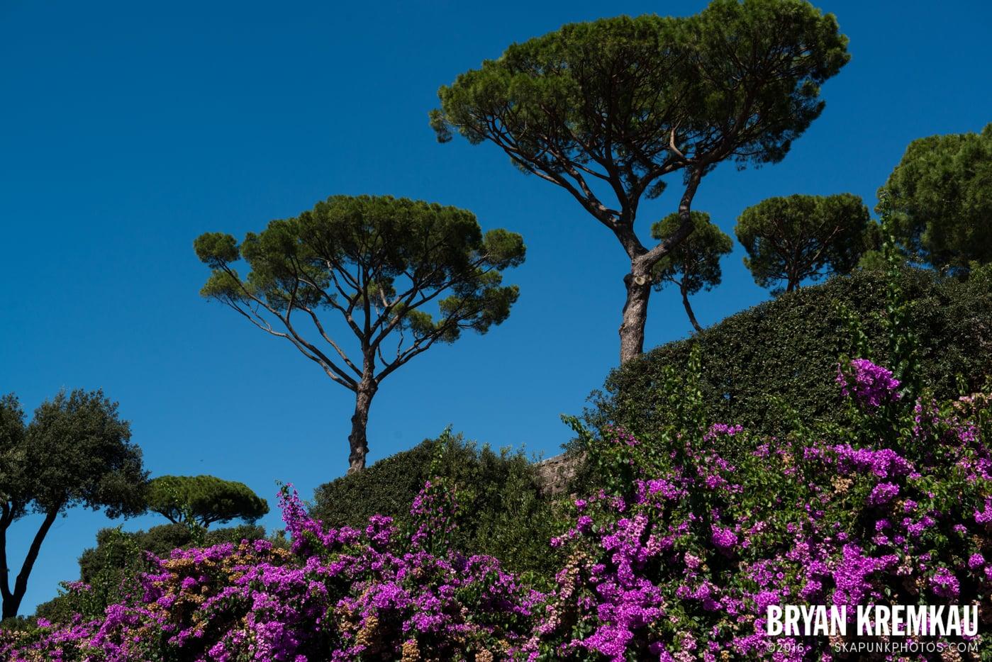 Italy Vacation - Day 12: Rome - 9.20.13 (27)